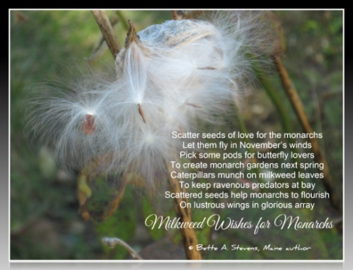 Milkweed Wishes for Monarchs POEM bas 2015
