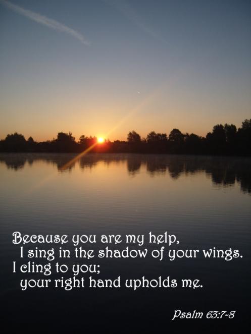Psalm 63:7-8
